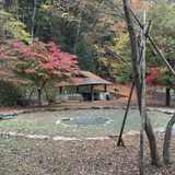 東京都 山のふるさと村キャンプ場の投稿画像 15493