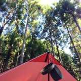 京都府 久多の里オートキャンプ場の投稿画像 17202